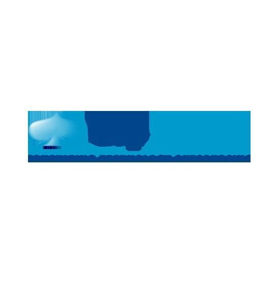 capgeminin