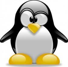 SEO Strategy after Google Penguin
