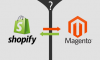 Magento vs. Shopify: Differences You Must Know