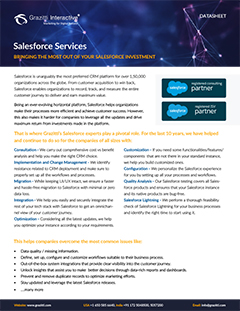 Salesforce Cloud<sup>®</sup> Services