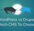 WordPress vs Drupal - Which CMS To Choose?