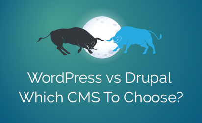 WordPress Vs Drupal - Which CMS to Choose
