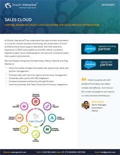 Custom, Advanced Sales Cloud<sup>®</sup> Solutions for Sales Process Optimization