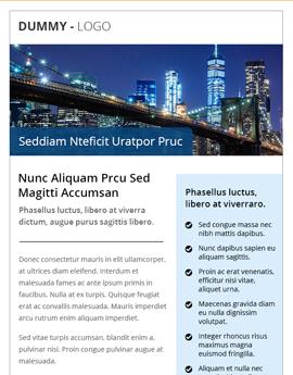 Premium Email 11