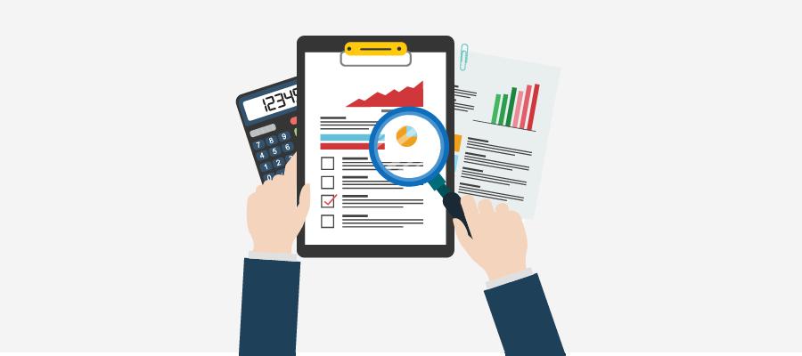 Data Auditing