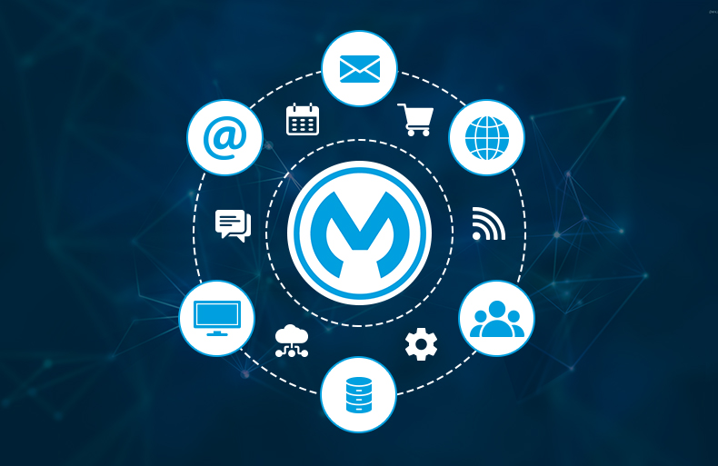 Transforming Digital Strategies With MuleSoft's API Ecosystem