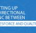 Setting up Bidirectional Sync Between Salesfo