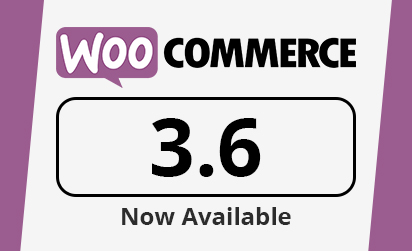 Reasons Why WooCommerce Store Owners Are Jumping To The Latest 3.6 Release
